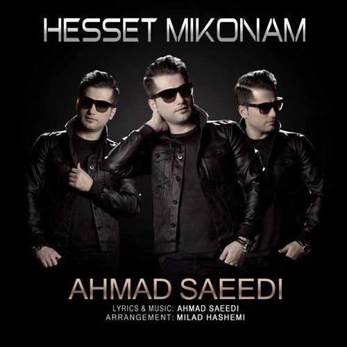 دانلود  آهنگ  احمد سعیدی  حست میکنم