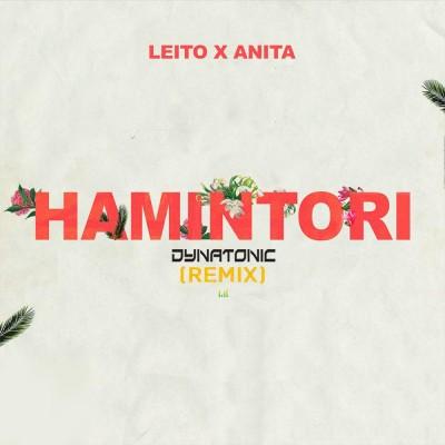 Behzad Leito<p>Hamintori (Dynatonic Remix)</p>