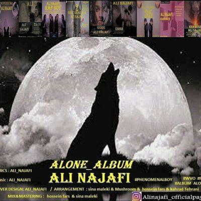 دانلود آلبوم علی نجفی   تنها