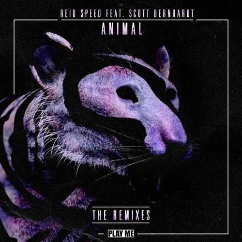 دانلود آهنگ Riot Animal (feat. Scott Bernhardt) RIOT Remix feat Scott Bernhardt