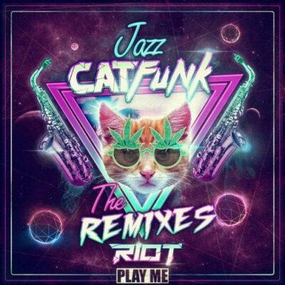 دانلود آهنگ Riot Jazz Cat Funk SirensCeol Remix