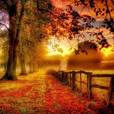 دانلود آلبومستین پاییز