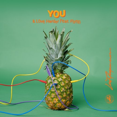 دانلود آهنگ Lost Frequencies You feat. Flynn and Love Harder